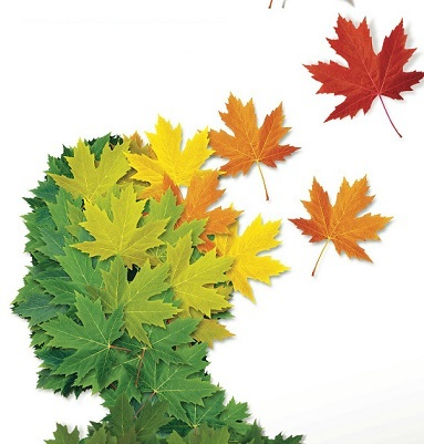 Image of a human head sillouete made of green leaves with some brown and yellow leaves falling off